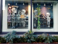 Susan Brown, Skeleton City Puppets, South Lake Union